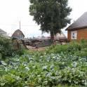 Продам участок в Криводановке, НСО, с.Криводановка, ул. Малороссийская, 45