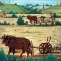 Вспашка земли в Переславле-Залесском