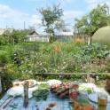 Дача, садовой участок