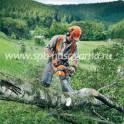 покос травы мотокосами спил деревьев бензопилами, фотография 4