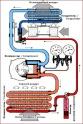 Продажа, Ремонт, Заправка, Обслуживания:   Автомобильного кондиционера(Автокондиционера),   Рефрижераторное оборудовани