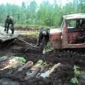 требуется бригада с техникой на лесозаготовку