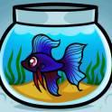 склеиваю аквариум с любого стекла