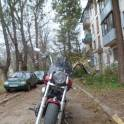 продам Honda shadow spirit 750