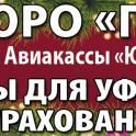 МАШБЮРО ПРОФИ