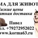 Корма и наполнители для собак и кошек