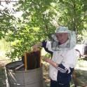 Продаю мед!