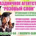 Проведение выпускных в 4 классах в Солнечногорске. Аниматоры Солнечногорск., фотография 4