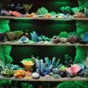 Аквариумные декорации. коралловые рифы