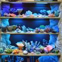 Уникальные аквариумные украшения