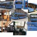 Автобус МАЗ 103569
