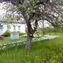 Продаётся дом в Рязанской области, фотография 4