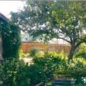 дом.участок, фотография 1