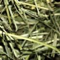 Корм, комбикорм, зерно, сено