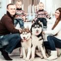 Индивидуальные и семейные фотосессии
