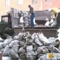 вывоз строительного мусора,уборка территории