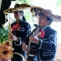 Поздравления. Мексиканская сперенада