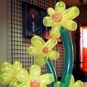 воздушные шары с гелием!!