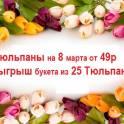 тюльпаны на 8 марта . доставка