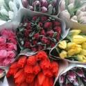 Готовые букеты красивейших тюльпанов к 8 Марта! Доставка до Вашего дома!