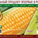 Продаю кукурузное масло