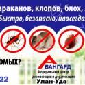 Истребительная обработка !!! Тараканов, клопов, муравьев и проч.насекомых !