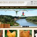 Продажа породистых кур брама, орпингтон, кохинхин в Воронеже и Воронежской области