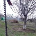 ТРАВОКОСКА, фотография 4