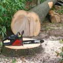 Корчевание и спил деревьев