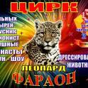 Рыбинск цирк шапито Фараон