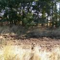 10,5 соток земли продам в Ростовской области