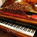 Настройка, ремонт пианино, фортепиано в Черноголовке