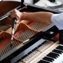 Настройка, ремонт пианино, фортепиано в Яхроме