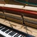 Настройка, ремонт пианино, фортепиано в Кингисеппе