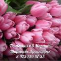 Принимаем заказы на тюльпаны к 8 Марта!!!