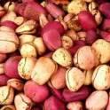 Орех Кола. Прямые поставки продукции из Западной Африки. Энергетик и средство для похудения., фотография 3