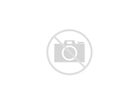 Тайский котик) вязка - продажа