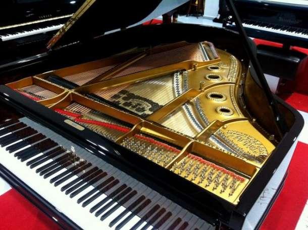 Настройка, ремонт пианино, фортепиано в Даровском, фотография 1