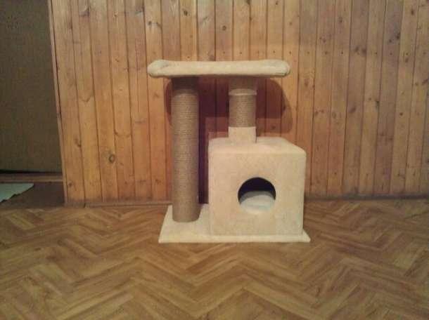Как сделать домики для кота