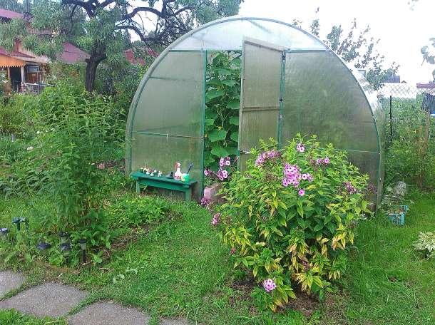 Продам сад , фотография 2