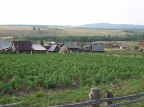 Продаю деревянный дом в деревне Петрушкино, Кусинский р-он, Петрушкино, фотография 3