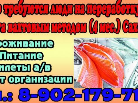 Рыбообработчики, фотография 1