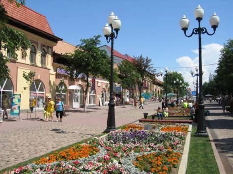 Продажа магазина на Таганрогском шоссе, фотография 1