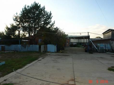 Продается мини-ферма со своим пастбищем и жилым домом в 250 км от Москвы, фотография 4