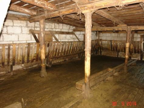 Продается мини-ферма со своим пастбищем и жилым домом в 250 км от Москвы, фотография 5