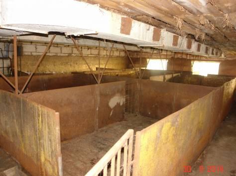 Продается мини-ферма со своим пастбищем и жилым домом в 250 км от Москвы, фотография 8