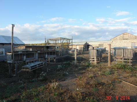Продается зем. участок 90ГА с мини-фермой и жилым домом в 250 км от Москвы, фотография 7