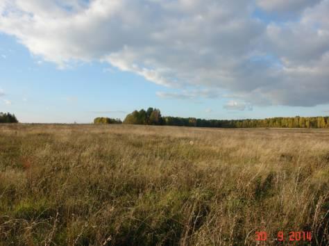 Продается зем. участок 90ГА с мини-фермой и жилым домом в 250 км от Москвы, фотография 9