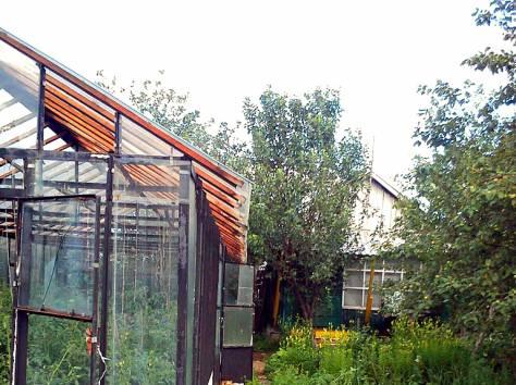 сад в Кыштыме на острове Бычном, фотография 3
