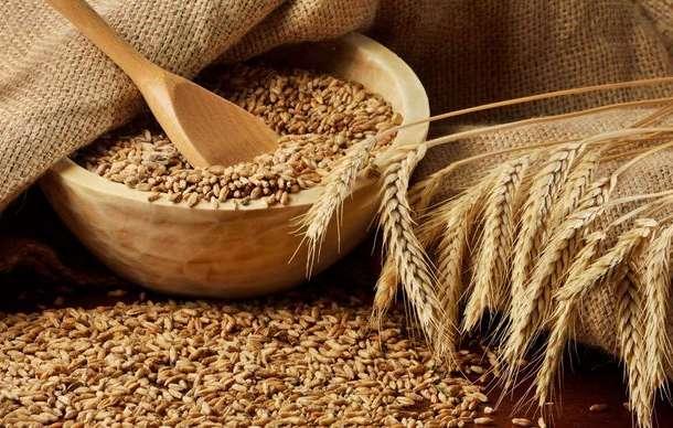 Зерновые и зернобобовые культуры оптом, фотография 1